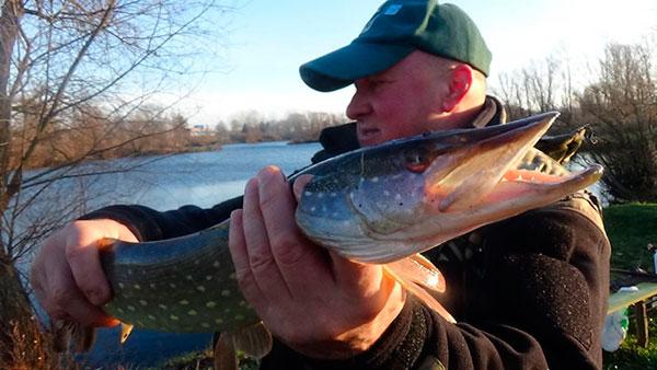 Рыбалка на щуку в декабре