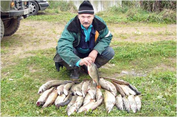 рыбалка в Подмосковье - ловля щуки