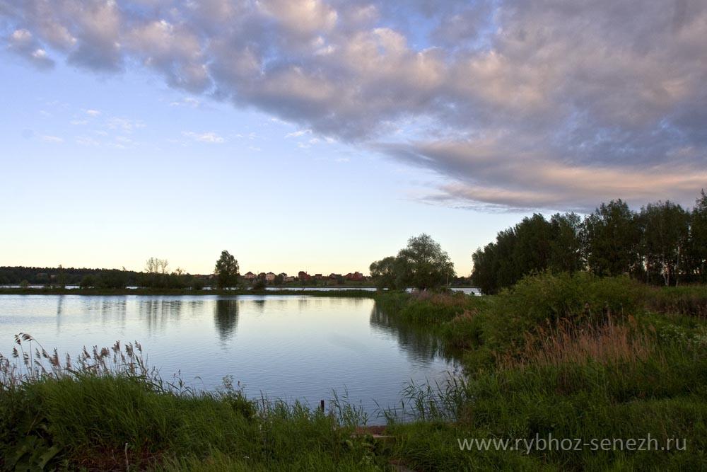 Рыбалка в Подмосковье - бесплатные водоемы