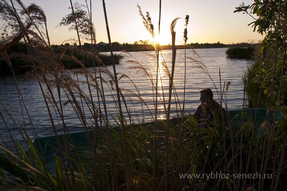 Летняя рыбалка ночью