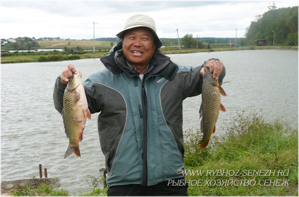 Отзывы о рыбалке