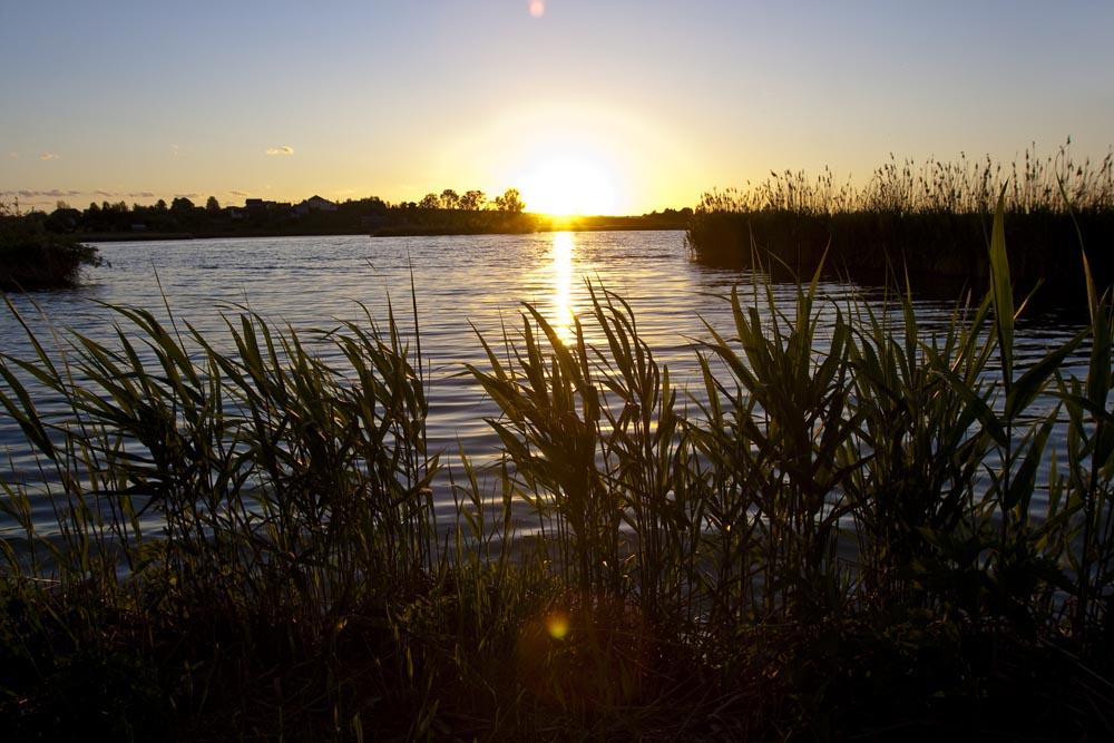 Рыбалка на утренней зорьке – это незабываемо