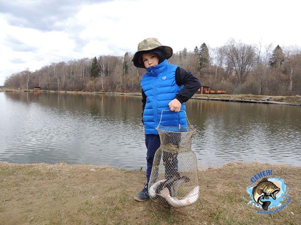 рыбалка в современном воспитани детей