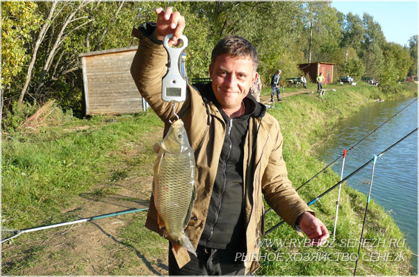 летняя рыбалка в рыбхозе Сенеж