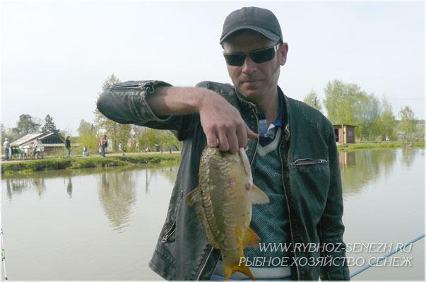 на карпа летняя рыбалка