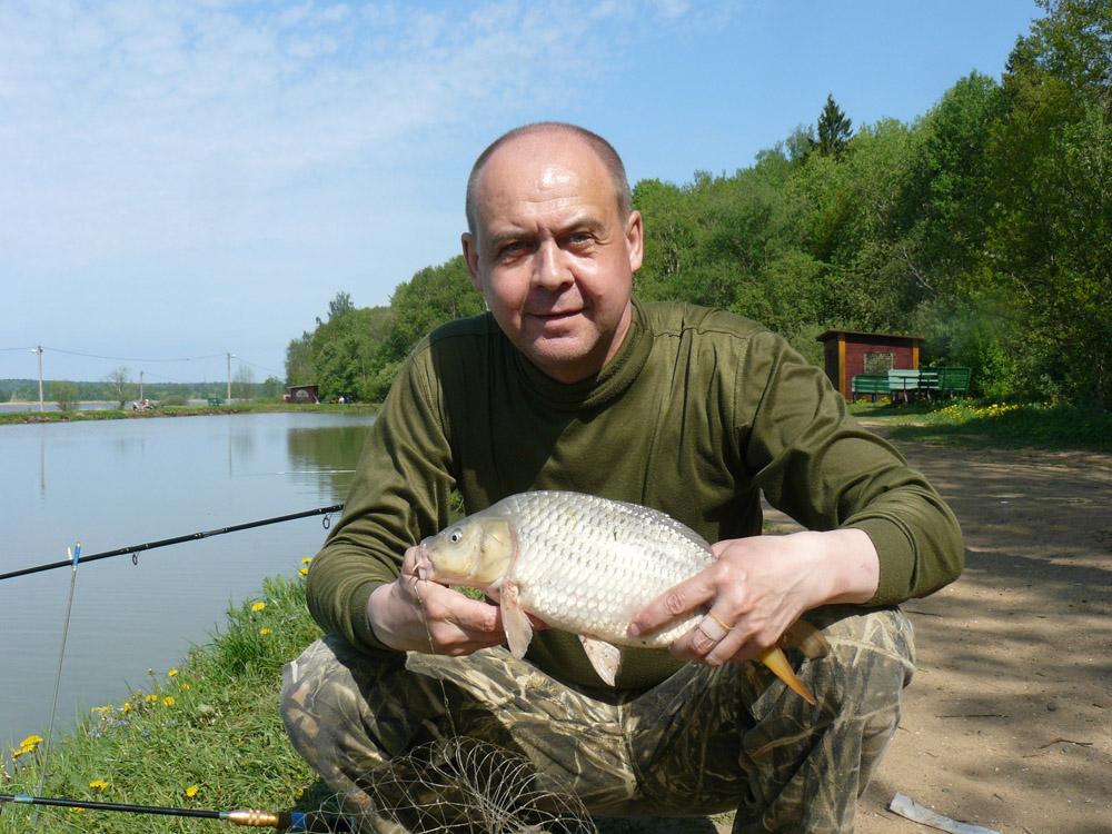 Бесплатная рыбалка в подмосковье карп