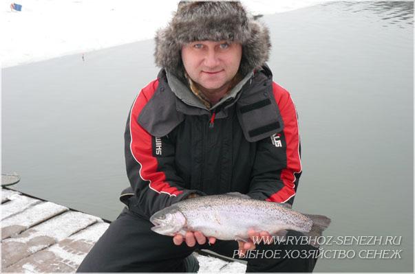 форель в рыбхозе Сенеж