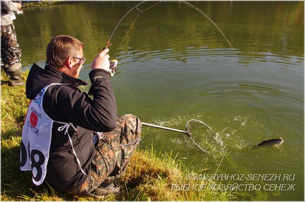 Как поймать форель Особенности ловли форели на спиннинг
