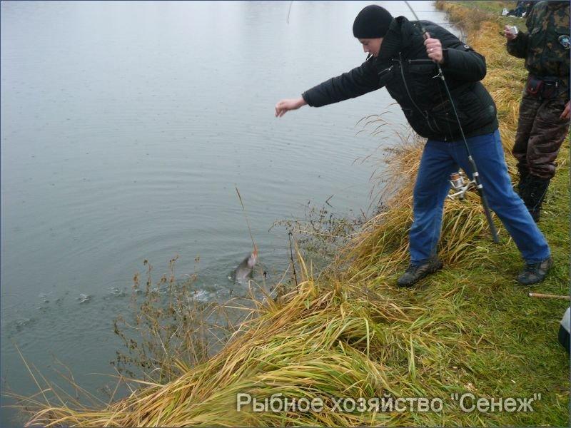 рыбалка в подмосковье на форель