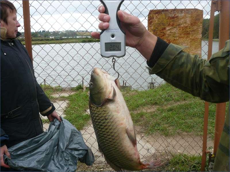 фотоотчеты о рыбалке новосибирск способ