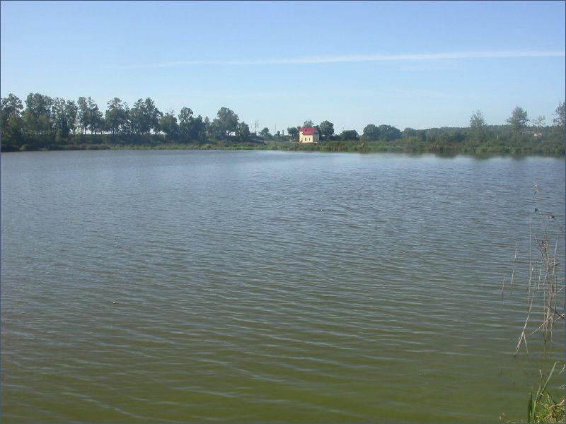 рыбалка на толстолобика весной видео